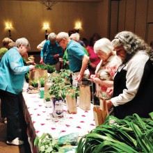 "Garden Club members select a plant to ""adopt."" Photo by Tom Cindric"