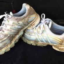 Muddy golf shoes
