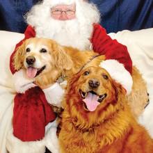 Santa Claus visits the annual Santa Paws event.