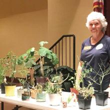 Carolyn Tinner, Denton County Master Gardener