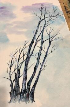Branches by Francesca Romano